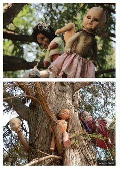In the mood for a spooky adventure? Head to the Island of Dolls. YESSSSSSSSSSSS!!!!!!