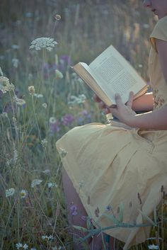 Reading amongst the flowers.