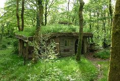 Coolest Cabins: The Eco Friendly Cabin