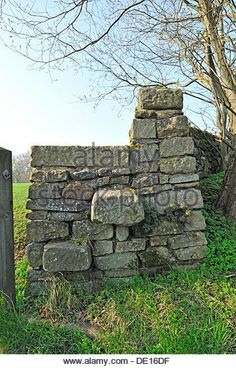 Find the perfect stile stock photo. Stone Masonry, Dry Stone, Stone Walls, Stone Work, Stiles, Land Art, Wall Ideas, Fences, Gates