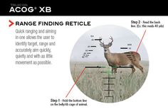 1000 Images About Crossbow Hunting On Pinterest Deer