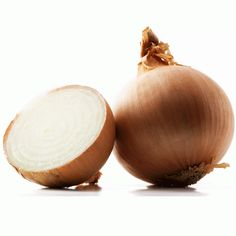 Organic Gabriella Onion Seeds. #onions  #garden #gardening