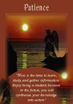 Oracle Card Patience | Doreen Virtue | official Angel Therapy Web site