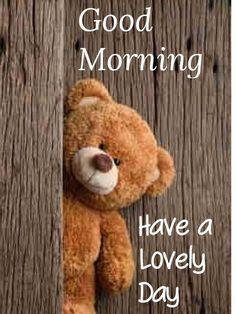 Good Morning Wallpaper For Whatsapp