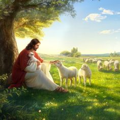 Jesus Gif, God Jesus, Church Pictures, Bible Pictures, Christian Music Videos, Christian Art, Jesus Pastor, Jesus Christ Painting, Image Jesus
