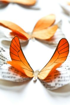 Orange decorating ideas | These orange paper #butterflies will be perfect as fall wedding decorations or for your orange party decor. They will also be perfect for a tropical theme. Add fuchsia butterflies and golden touch : you'll have the perfect color combo for a Bollywood or oriental theme | Handmade in France by @LPPSB