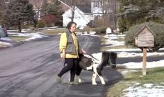 Panda the miniature guide pony and her blind owner Ann Edie have been together for 14 years, then Panda fell sick.