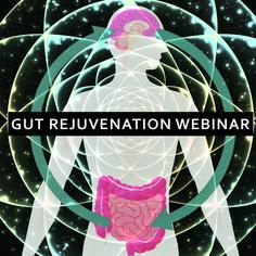Gut Rejuvenation Webinar - Sacred Activations