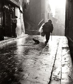 Henri Cartier Bresson (after rain with cat)