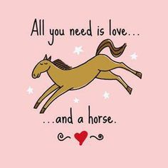 All you need is love.....& a horse. So true :)