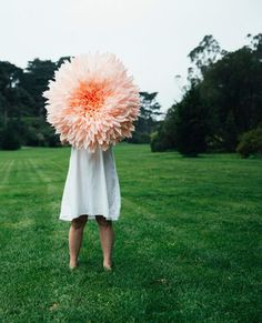 Holy amazing! Oversized paper dahlia.