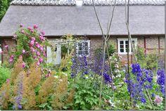 Beautiful garden & house