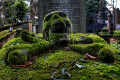 Skull Gravestone ecncrusted in Moss, photo by Tunebm on flickr [4289x2855]