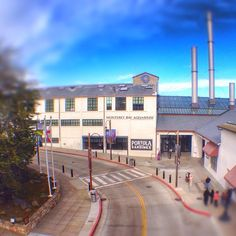 The Monterey Bay Aquarium is having its annual Community Open House and admission is FREE this week (12/7 - 12/15) for Monterey County residents. ------------------------------