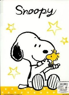 Peanuts Snoopy 5 A4 Index5 Slots Clear File