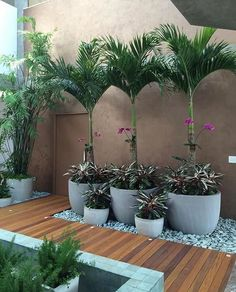 90 Awesome Vegetables and Flower Container Garden Design Ideas For Summer Side Yard Landscaping, Tropical Landscaping, Tropical Garden, House Plants Decor, Plant Decor, Backyard Garden Design, Interior Garden, Container Flowers, Container Gardening
