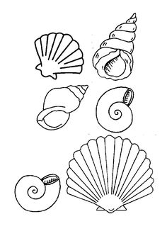 Coloriage Coquillage De Mer à colorier - Dessin à imprimer