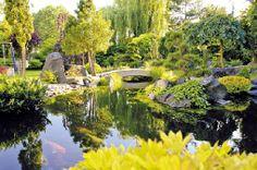 Gardenplaza - Schonende Pflegezusätze erfüllen den Gartenteich wieder mit Leben - Von glücklichen Teichbesitzern