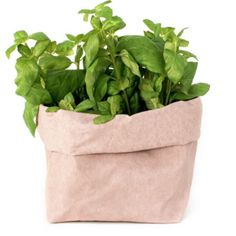 Washable paper bag made with plant-based fiber that does not come from deforestation. Made in a completely handmade way in Tuscany (Italy). Hand Sewing, Plant Based, Fiber, Herbs, Tuscany Italy, Paper Bags, Washing Machine, Delicate, Wanderlust