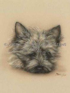 Cairn Terrier Dog Art ...