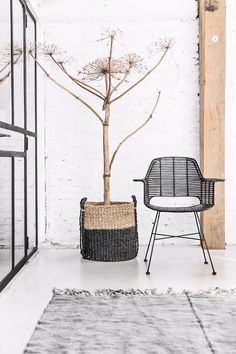 HKLiving Interior design 2016.  LOVE THE TREE!