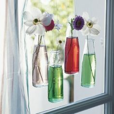 Des bouteilles comme des vases suspendus // bottles as suspended vases
