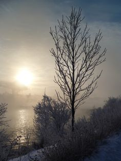 Winter Sunrise over S. Saskatchewan River in Saskatoon, SK