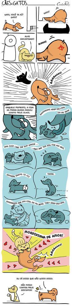 Cães e Gatos | Carlos Ruas | #cãesegatos #carlosruas #quadrinhos #hq