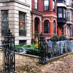 Spooky Marlborough Street! #halloween #boston #backbay