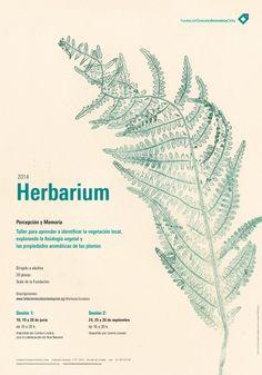 Herbarium 2014 Memory and perception #plants #botanics #poster #design #territory #education