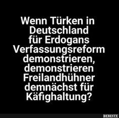 Wenn Türken in Deutschland für Erdogans Verfassungsreform demonstieren..