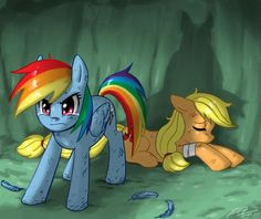 My little pony rainbow dash and applejack I'm not sure what this picture was made for but I love how protective Rainbow Dash is if her friends.