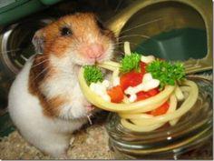 Fourth step Spaghetti for a friend. Happy friend