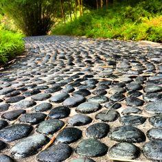 Pebble inlay path Singapore Botanic Gardens.