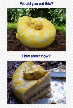 Snake Cakes, Cute Cakes, Creative Cakes, Cake Creations, Let Them Eat Cake, No Bake Cake, Amazing Cakes, Cupcake Cakes, Cake Recipes