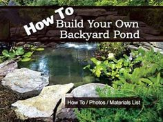 Build a deck ponds and how to build on pinterest for Build your own pond