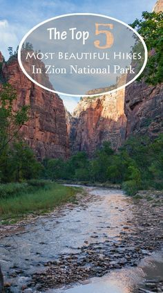 Zion National Park has so much to offer that it can be tough to decide how to divide your time. Here are my five favorite Zion National Park Hikes, which can be accomplished in 2 days at the park. Hiking Usa, Travel Usa, Travel Tips, Travel Ideas, Usa Roadtrip, National Parks Usa, Places To Travel, Vacation Places, Vacation Destinations