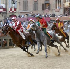 Attend the Palio Horse Race in Siena, Italy | 83 Travel Experiences to Have While You're Alive and Breathing | POPSUGAR Smart Living