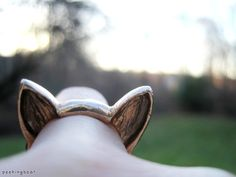 Show off your corgi pride! Own a corgi? Own corgis? Or maybe youre going to get one, or just really really want one. Either way, this ring is just