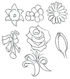 How to Draw Flowers Stage 3