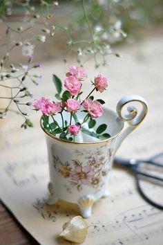 Beautiful Flowers Wallpapers, Farm Stay, Language Of Flowers, Romantic Cottage, Floral Theme, My Cup Of Tea, Rose Cottage, Flower Wallpaper, Spring Time