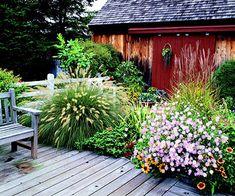 Fall Garden Plan -- grasses