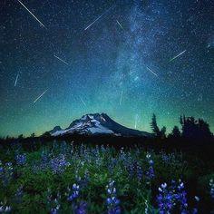 preciousplanet Mt. Hood, Oregon #PreciousPlanet Photo by @leiferiksmith via @wildlife.pic