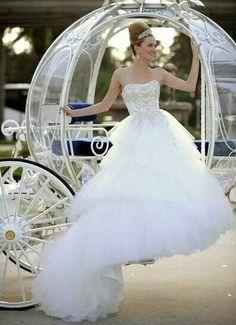 Cinderella Pumpkin Carriage Wedding Themed