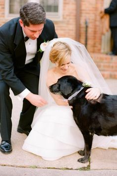 Your dog is more then just a pet, so dress them up with flower garlands for your big day.  Pinned by Afloral.com from http://weddbook.com/media/1739793/pets-in-wedding
