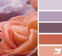 Rose Hues color palette by Design Seeds Colour Pallette, Colour Schemes, Color Patterns, Color Combinations, Lavender Color Scheme, Design Seeds, Color Uva, Colour Board, Color Stories