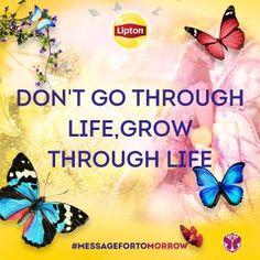 Go to Tomorrowland with Lipton Ice Tea