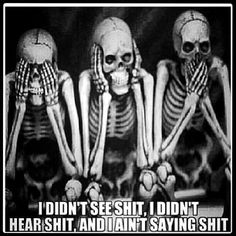 """""""See no evil. Hear no evil. Speak no evil."""" Words that are IDEAL, yet only attainable by the dead. Vanitas, Omerta Tattoo, Tierischer Humor, Humor Quotes, Funny Humor, See No Evil, Skull And Bones, Skull Art, Skull Decor"""