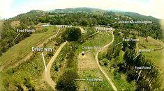 van weiland tot 10 jaar oud voedselbos [Geoff Lawton's Permaculture Farm] Farm Gardens, Outdoor Gardens, Geoff Lawton, Ecommerce, Permaculture Design, Permaculture Farming, Ecology Design, Aquaponics Diy, Forest Design
