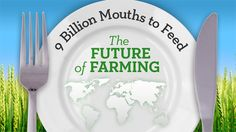 Career in Agriculture - 9 Billion Mouths to Feed: The Future of Farming - a great video series from UC TV